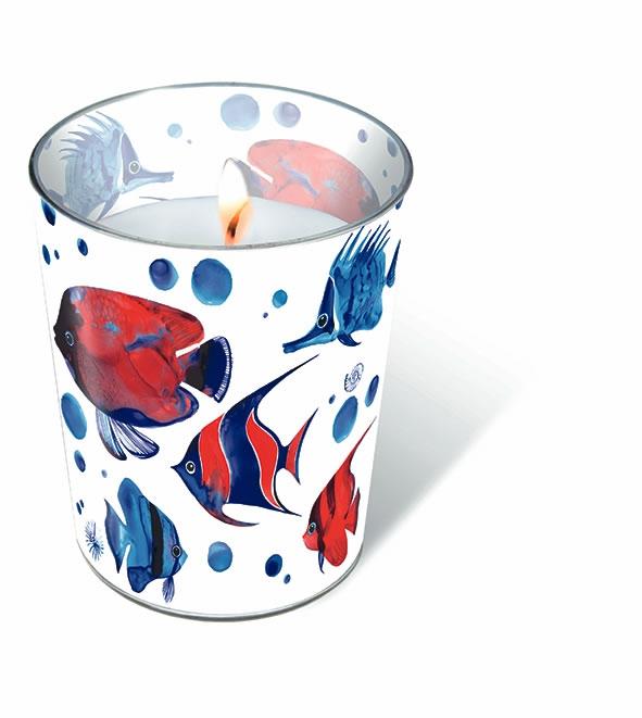 Glaskerze - Tropische Fische