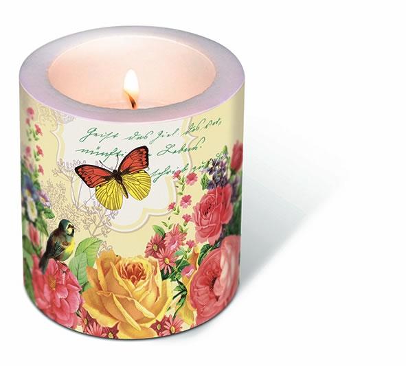 Dekorkerze - Porträt des Schmetterlings