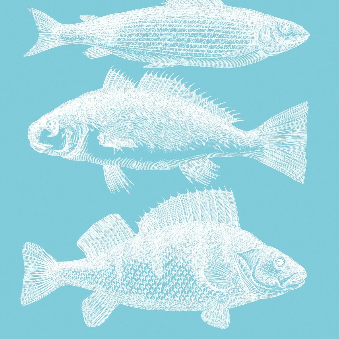 Servietten 33x33 cm - Riviera Fisch Aquacm