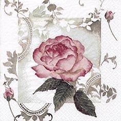 Servietten 33x33 cm - Enchanting Rose Vintage rosé