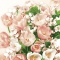 Servietten 33x33 cm - Pink Tulips & Cherry Blossom