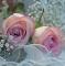 Servietten 33x33 cm - Ambiance Romantique