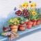 Servietten 33x33 cm - Windowsill with Flower Pots